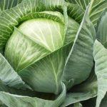 Как правильно и безопасно есть капусту при диабете?