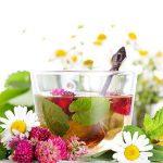 Лечебные травы при сахарном диабете 2 типа: разновидности, эффективность