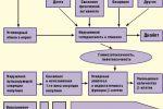 Влияние генетики и внешней среды