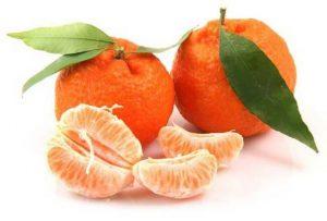 плод очень полезен