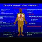 Милдронат: как избежать осложнений диабета 2 типа
